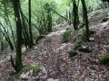 03 - Rotellemancanti - Monte Torre Maggiore Hard