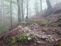 46 - Rotellemancanti - Monte Semprevisa